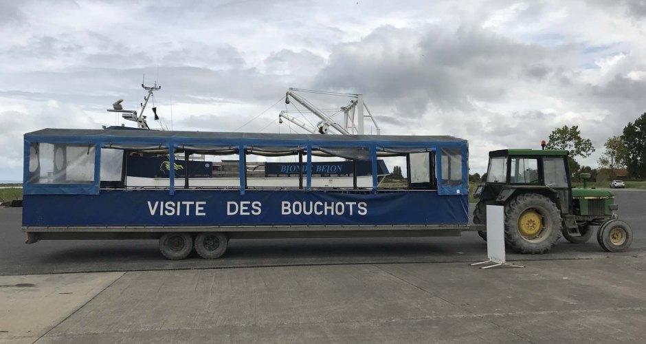 ル・ヴィヴィエ=シュル=メールのムール貝養殖場見学ツアー