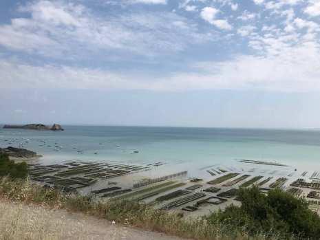 カンカルの牡蠣市場とモン・サン・ミッシェル湾